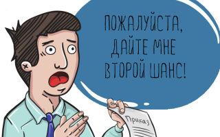 Образец приказа об объявлении выговора